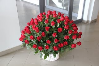 Kosz róż